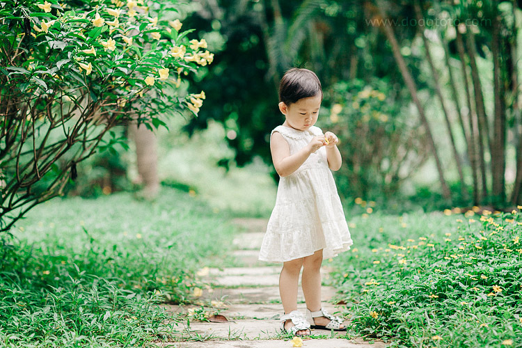 10-dodototo.com-200930129612