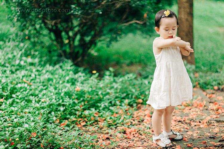12-dodototo.com-200935249629