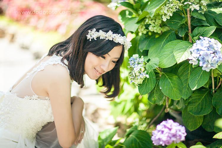 22-dodototo.com-141415381497